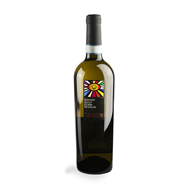 VILLADORO Sannio Coda di Volpe vino bianco